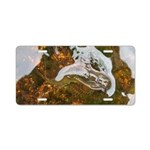 Taneycomo Sculpin in thin water Aluminum License P