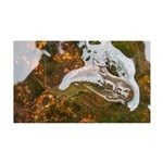 Taneycomo Sculpin in thin water Wall Decal