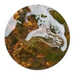 Taneycomo Sculpin in thin water Round Car Magnet