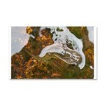 Taneycomo Sculpin in thin water Car Magnet 20 x 12