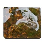 Taneycomo Sculpin in thin water Mousepad