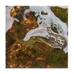 Taneycomo Sculpin in thin water Tile Coaster