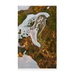 Taneycomo Sculpin in thin water 3'x5' Area Rug