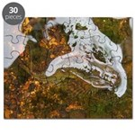 Taneycomo Sculpin in thin water Puzzle