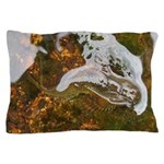 Taneycomo Sculpin in thin water Pillow Case