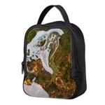 Taneycomo Sculpin in thin water Neoprene Lunch Bag