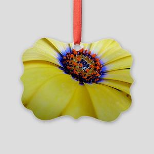 Daisy Picture Ornament