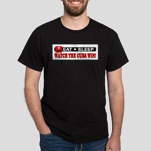 TEAM PRIDE! T-Shirt