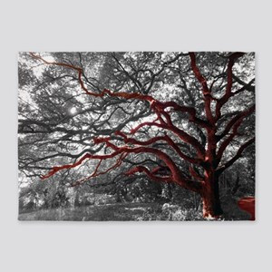 Photo Tree Branch 5 X7 Area Rug