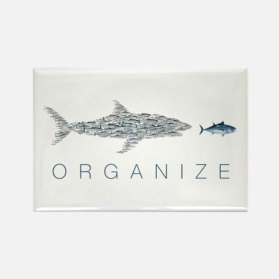 Organize Fish Magnets