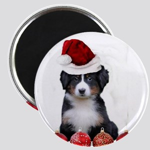 Christmas Bernese Mountain Dog Magnets