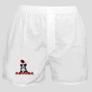 Christmas Bernese Mountain Dog Boxer Shorts