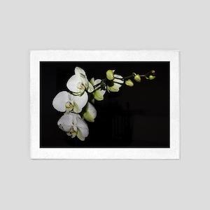 Phalaenopsis 1 5'x7'Area Rug