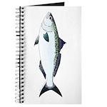 Australian Salmon kahawai Journal