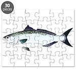 Australian Salmon kahawai Puzzle