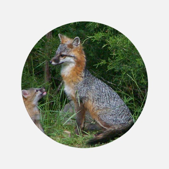 "MOTHER RED FOX AND BABY 3.5"" Button"