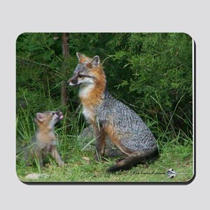 MOTHER RED FOX AND BABY Mousepad