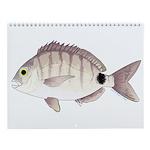 Odd Inshore Gulf Of Mexico Fishing Wall Calendar