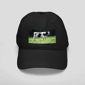 Holstein Meadow Black Baseball Hat