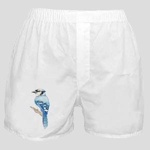 Watercolor Blue Jay Bird Nature Art Boxer Shorts