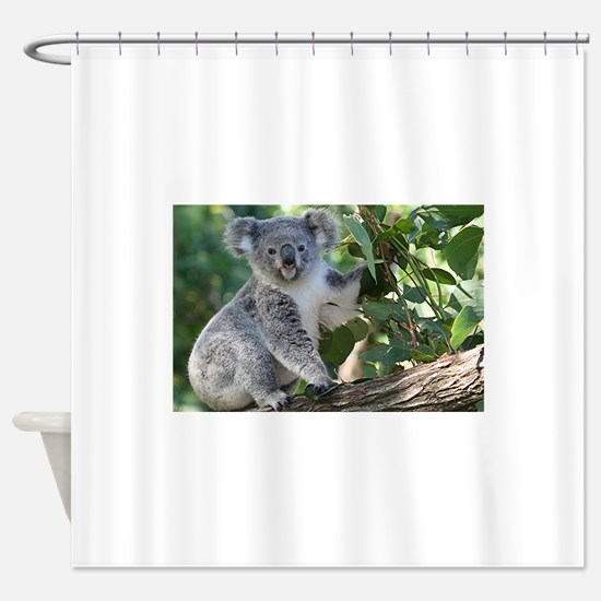 Cute koala Shower Curtain