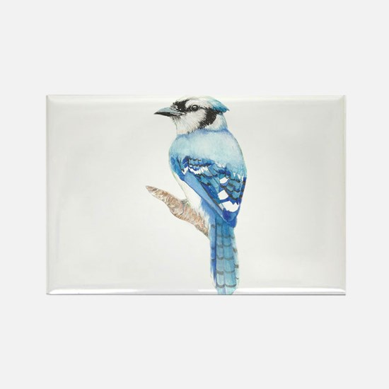 Watercolor Blue Jay Bird Nature Art Magnets