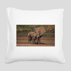 elephants Square Canvas Pillow