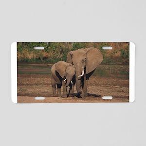 elephants Aluminum License Plate