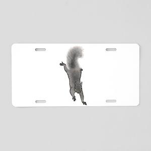 Grey Squirrel Climbing Down Aluminum License Plate