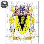 Hannemann Puzzle