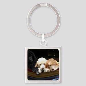 Standard Poodle Puppies Square Keychain