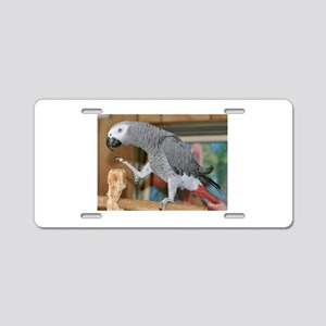 african grey parrot Aluminum License Plate