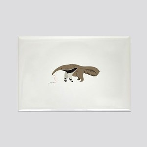 Anteater Ants Magnets