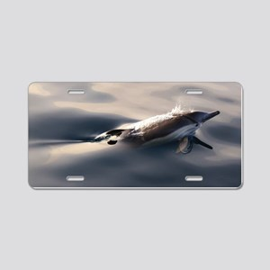 Dolphin Gaze Aluminum License Plate