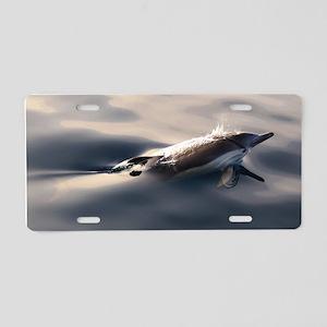 Dolphin Gaze Aluminum License Plate