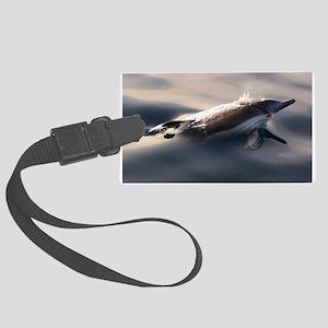 Dolphin Gaze Large Luggage Tag