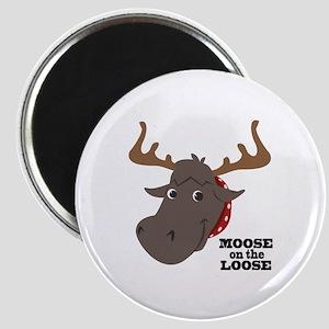 Moose On Loose Magnets