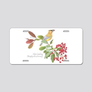 Cedar Waxwing and berries Aluminum License Plate