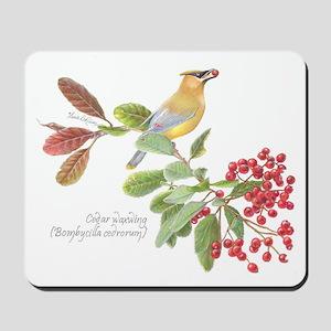 Cedar Waxwing and berries Mousepad