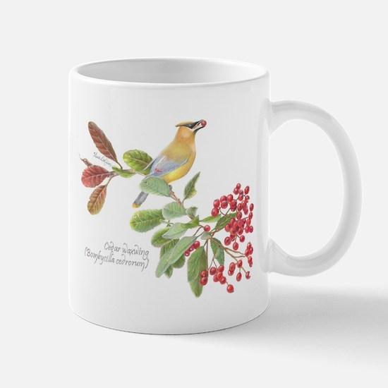 Cedar Waxwing and berries Mugs