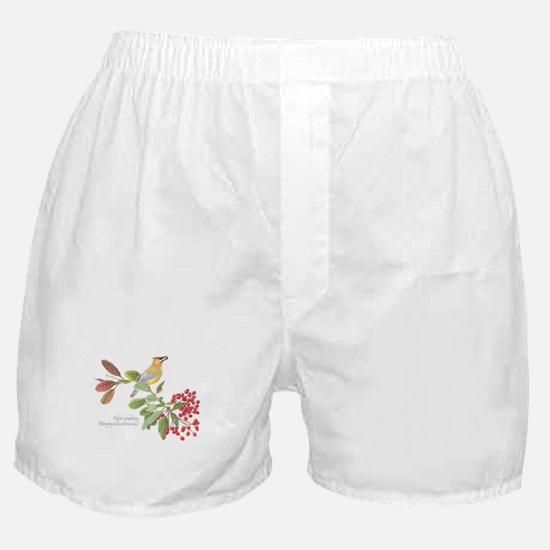 Cedar Waxwing and berries Boxer Shorts
