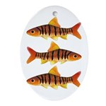 African Banded Barb Oval Ornament