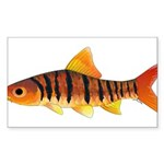 African Banded Barb Sticker