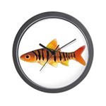 African Banded Barb Wall Clock