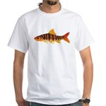 African Banded Barb T-Shirt