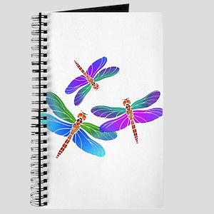 Dive Bombing Iridescent Dragonflies Journal