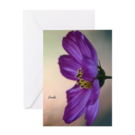 Flashy Cosmos Bloom Greeting Cards