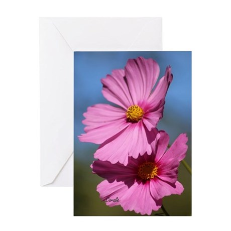 Pink Cosmos Bloom Greeting Cards