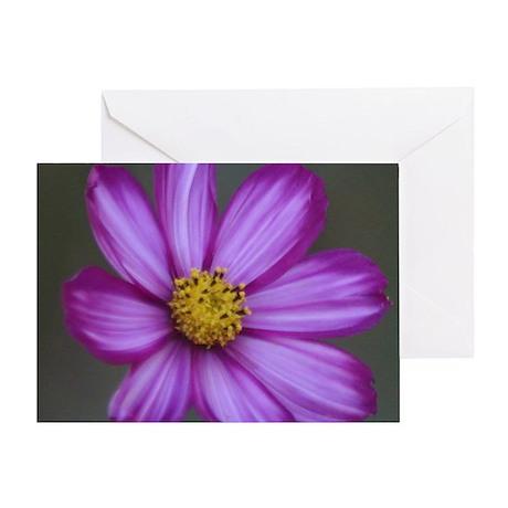 Flashy Cosmos Flower Bloom Greeting Card
