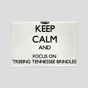 Keep calm and focus on Treeing Tennessee B Magnets